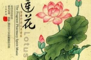莲花与轻音乐的吟唱:芳香疗法心灵音乐:《莲语的呢喃》养心!