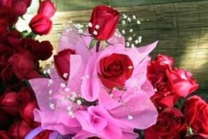 保健静心音乐:玫瑰情话。像在讲一个故事