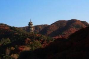 原始奔放,轻快生动、悠扬远古的轻音乐: the red tower