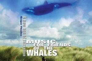 层层交迭的海浪与潮声,伴随着动人的情歌悠悠 :鲸鱼情歌