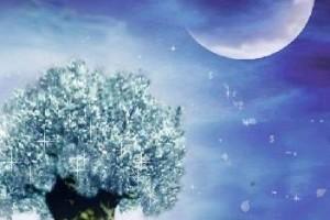 十分动听又温馨的音乐:《微笑的上弦月》