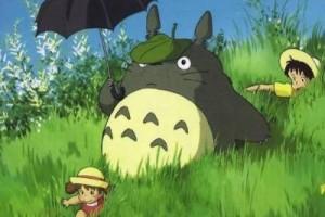 平静、温馨,温暖跳动的旋律:《龙猫my neighbor Totoro》