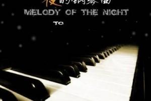 回味石进:夜的钢琴曲(五)系列