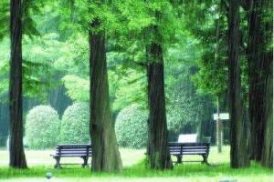 回忆之曲~《雨的印记》