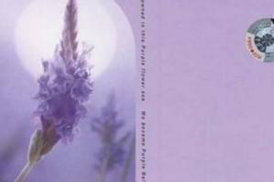 记忆是阵阵花香 我们说好谁都不能忘:《普羅旺斯的山居-薰衣草》