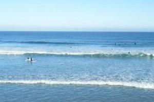夏日,送给你清新的海浪般的声音:《海花》