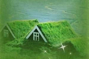 悠扬的陶笛,静静的遐想,温暖、感动:《风动草》