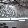 倒是想起那日老去 独自隐居于山林:《冬雪》
