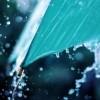 留下的也许是忧伤,又或许带着点凄惨的美:《rain》