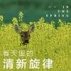 销魂欢快的假声,清新的旋律:《Until June - Sleepless》