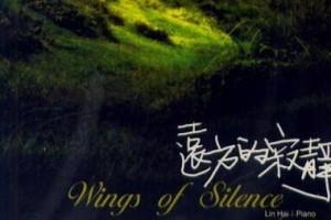 寂静的夜里,聆听那份心境:《远方的寂静》