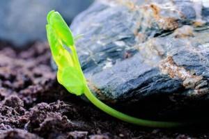 每一场经历都是生活的积累,每一次坎坷都是生命的历练:《Sicherheit By Generic》