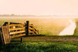 我们都是旅行者,踯躅于现实世界和内心世界的灰色地带:《Veloma》