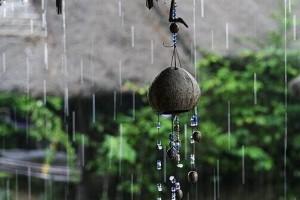 琴键在跳跃,旋律在飞扬:《iw ix - 碎月雨中奏 》