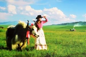 记:王洛宾和他的女人们:《荆棘鸟》