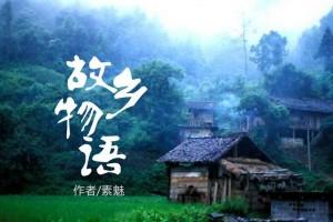 再也回不到过去那高山绿水,树林常伴,民风朴实的故乡:《故郷物语2》