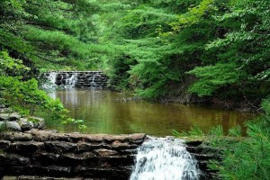 大自然,唤醒原本的我:《Nature's Path 自然小径》