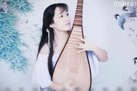 琵琶弹奏《采茶纪》MV