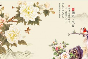 秦时明月-国色天香