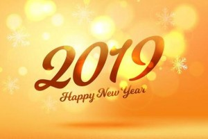 祝大家2019年新年快乐!