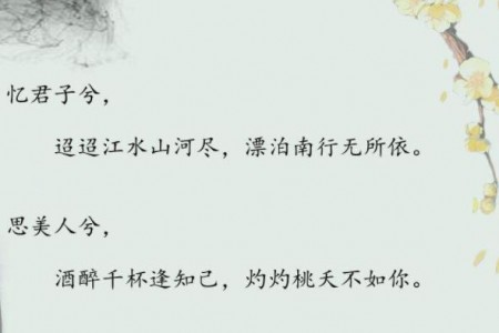 思美人-竹笛