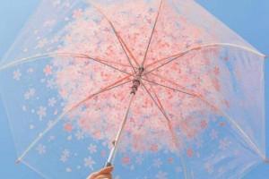 心善自然美丽,心慈自然柔和:《心灵雨伞 (Soul Umbrella) 》