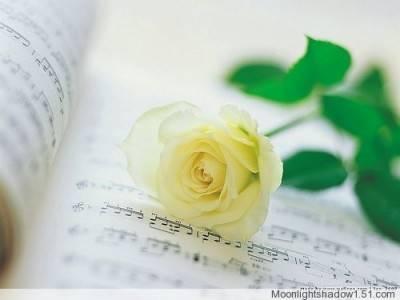 仙美的音乐:马头琴版:《同一首歌》