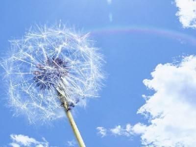 梦想中不能到达的地方,永远是最美的:《遥远的天空》