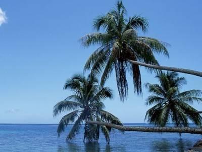 怀抱一份幽思,放松自己躺在岸堤上:《A Good Heart》