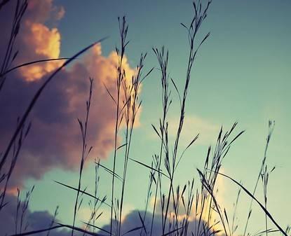 伴随着欢快旋律,美丽的心情:《长安夜市》