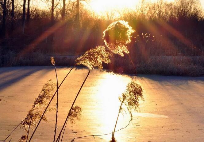 暖冬:《Warm Winter 》