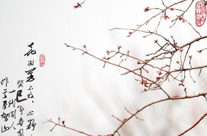 穿越四季书香,与文字氤氲:《心静性闲》