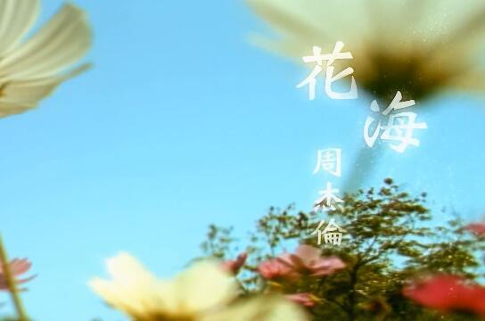 周杰伦MV:《花海》4K版本