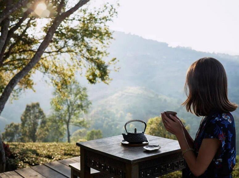 在云上写诗 在山里喝茶